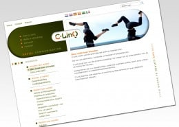 WordPress website voor C-LINQ
